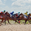 Stock Photo: PYATIGORSK,RUSSIA - JULY 7: race for the mares Big prize OaKS on