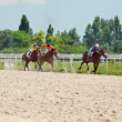 Stock Photo: PYATIGORSK,RUSSI- JULY 7: race for mares Big prize OaKS on