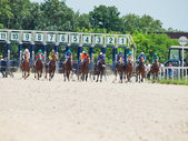 PYATIGORSK,RUSSIA - JULY 7: start of race for the Big prize OaKS — Стоковое фото