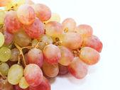 Red grape berries . closeup — Stock Photo