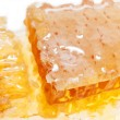 Golden fresh Honeycomb texture — Stock Photo