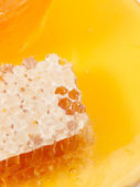 Fresh Honeycomb and honey around. close up — Stock Photo