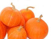 Mini pumpkins over white — Stock Photo
