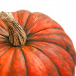Pumpkin over white. close up — Stock Photo