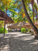 Tropical beach in Dominican republic. Caribbean sea. Saona islan — Stock Photo