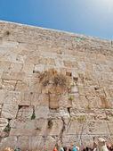 Ağlama duvarı şehirde jerusalem, İsrail — Stok fotoğraf