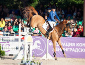 SAINT PETERSBURG-JULY 05: Rider Valeriya Sokolova on Sir Stanwel — Stock Photo