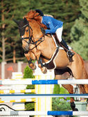 Sankt petersburg-juli 05: rider ppiinnppoonngg sokolova på sir stanwel — Stockfoto