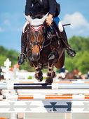 跳跃与车手马 — 图库照片