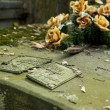 Neglected grave — Stock Photo