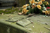 Neglected grave — Foto Stock