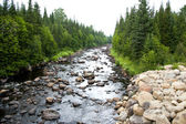 River in the Laurentian Mountains — Stock Photo