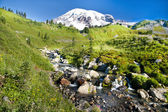 Mount Rainier at Paradise — Stock fotografie