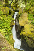 Ladder Creek Falls — Stockfoto