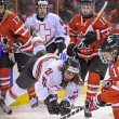 Stock Photo: IIHF 2013 Women's Ice Hockey World Championship