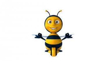 Zen bee — Stock Video