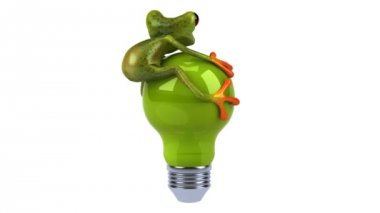 Frog with a light bulb — Stock Video #12683066