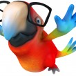 Fun parrot with glasses - Stock Photo