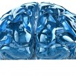 Blue brain — Stock Photo