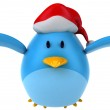 Blue bird santa — Stock Photo