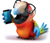 Parrot and phone — Stock Photo