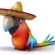 Parrot in sombrero — Stock Photo