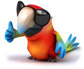 Divertente pappagallo — Foto Stock
