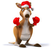 Christmas kangaroo boxer — Stock Photo