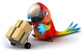 Parrot working — Stock Photo