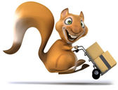 Fun squirrel mver — Stock Photo