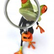 Fun frog — Stock Photo #31996705