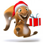 Christmas Squirrel — Stock Photo