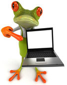 Frog with laptop — Stock Photo