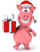 有趣的猪 — 图库照片