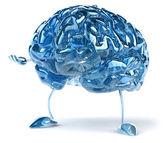 Cerveau du plaisir — Photo