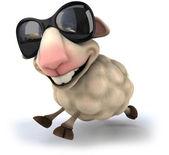 Cool Sheep — Stock Photo