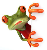 Sexy frog — Stock Photo