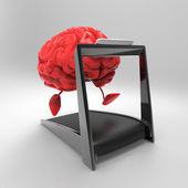 Cervello — Foto Stock