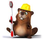Beaver — Stock Photo