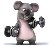 Koala — Stock fotografie