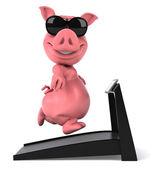 Pig . — Stok fotoğraf
