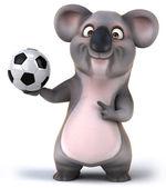 коала — Стоковое фото