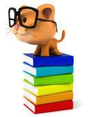 Smart Cat — Stock Photo