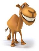 Spaß kamel — Stockfoto