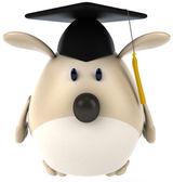 Divertido perro en tapa académica — Foto de Stock