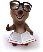 Bear reading — Stock Photo
