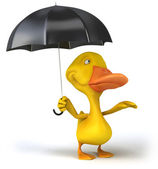 Duck and umbrella — 图库照片
