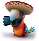 Zabawa papuga z smartphone — Zdjęcie stockowe