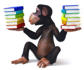 Monkey with books — Stock Photo