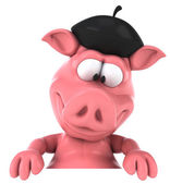 Funny pig — Stock Photo